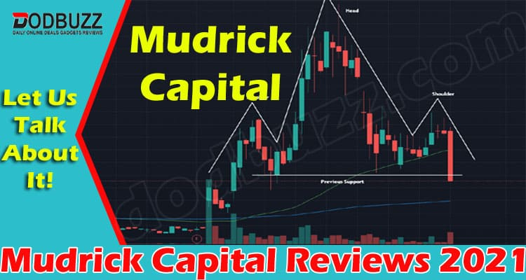 Mudrick Capital Reviews (June) About Investment Adviser!