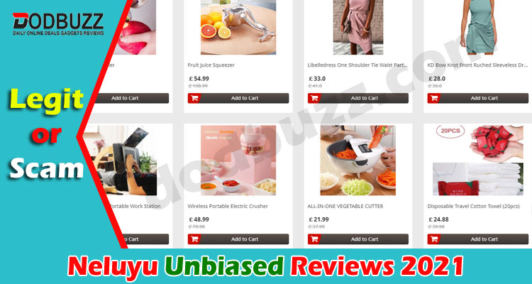 Neluyu Reviews (June 2021) Is the Site Legit Or A Scam!