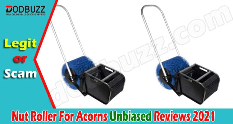 Nut Roller For Acorns Reviews {June} Is It Good Product