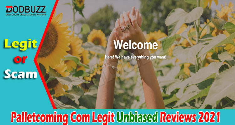 Palletcoming Com Legit (June) Check The Review Here!