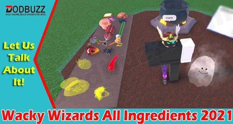Wacky Wizards All Ingredients 2021