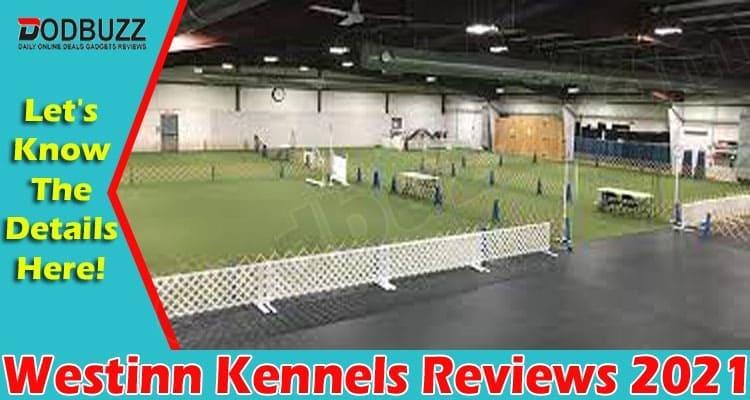 Westinn Kennels Reviews 2021
