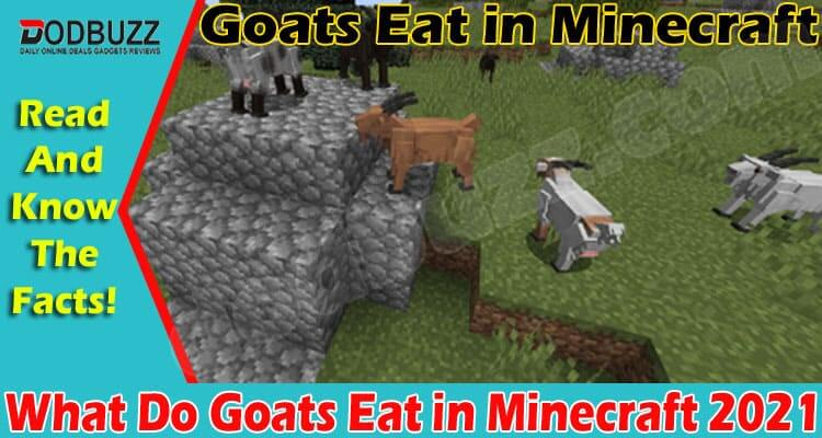 What Do Goats Eat in Minecraft 2021.