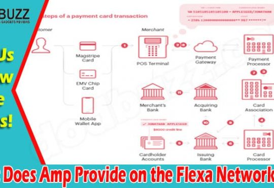 What Does Amp Provide on the Flexa Network {Jun} Read!