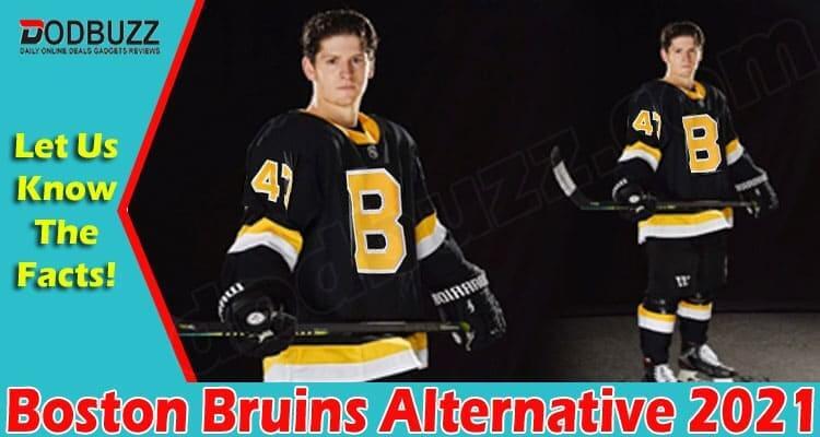 Boston Bruins Alternative 2021.