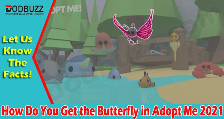 How Do You Get the Butterfly in Adopt Me 2021