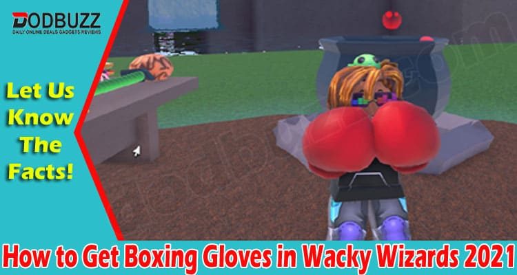 How To Get Boxing Gloves In Wacky Wizards 2021