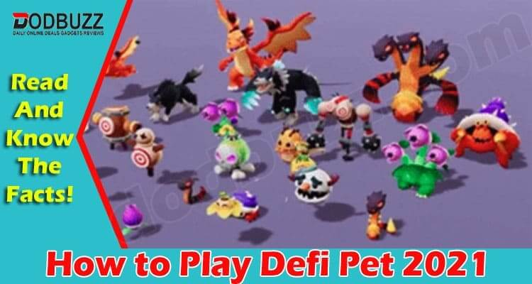 How to Play Defi Pet 2021