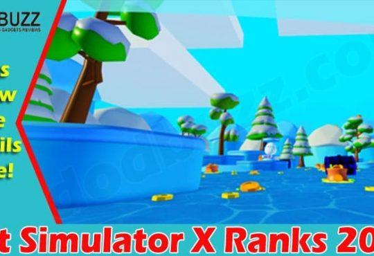 Pet Simulator X Ranks 2021