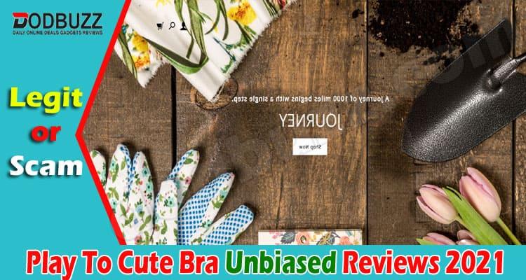 Play To Cute Bra Reviews 2021.