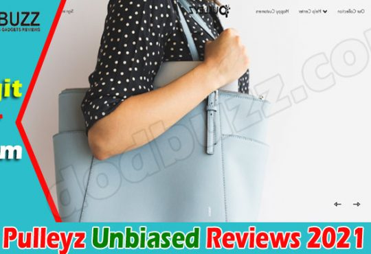 Pulleyz Reviews 2021