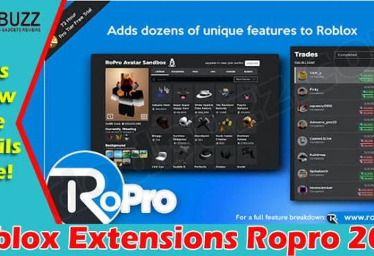 Roblox Extensions Ropro 2021