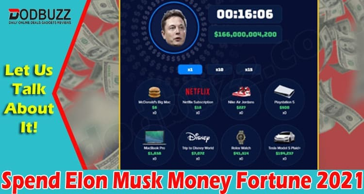 Spend Elon Musk Money Fortune 2021