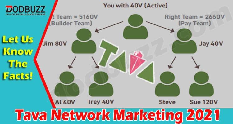 Tava Network Marketing 2021