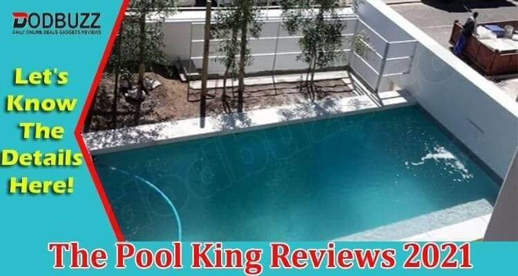 The Pool King Reviews 2021