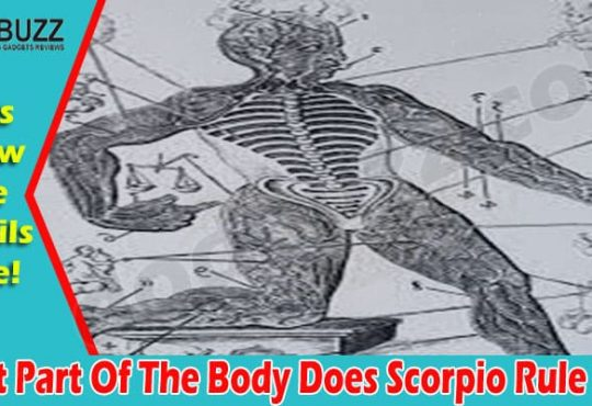 What Part Of The Body Does Scorpio Rule 2021.
