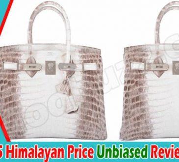 Birkin 25 Himalayan Online Product Reviews