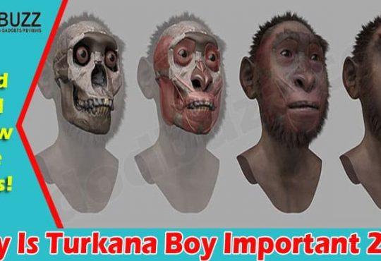 Why Is Turkana Boy Important 2021