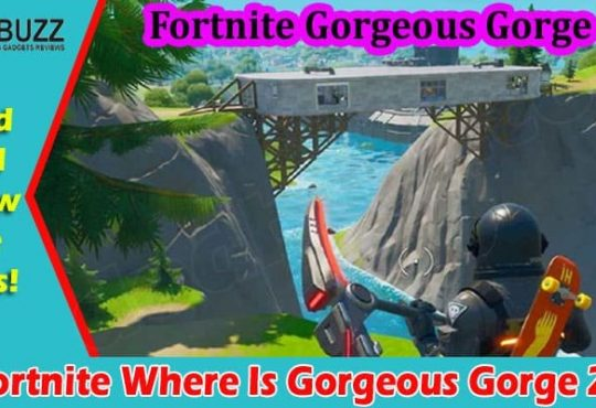 Gaming Tips Fortnite Where Is Gorgeous Gorge