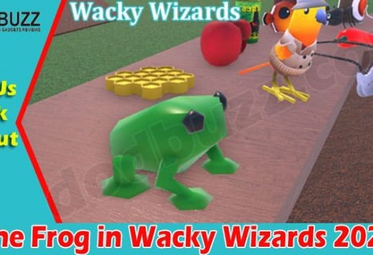 Gaming Tips Frog in Wacky Wizards