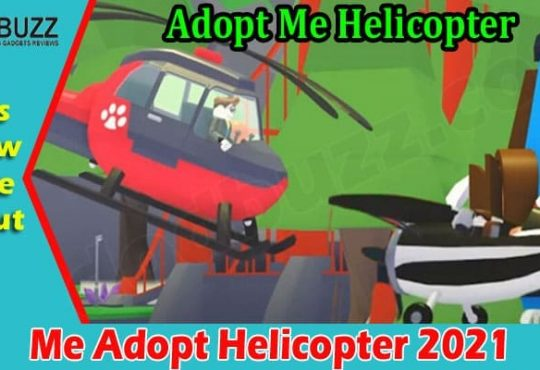 Gaming Tips Me Adopt Helicopter