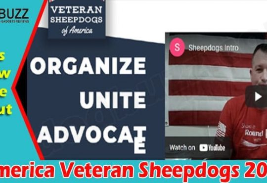 Latest News America Veteran Sheepdogs