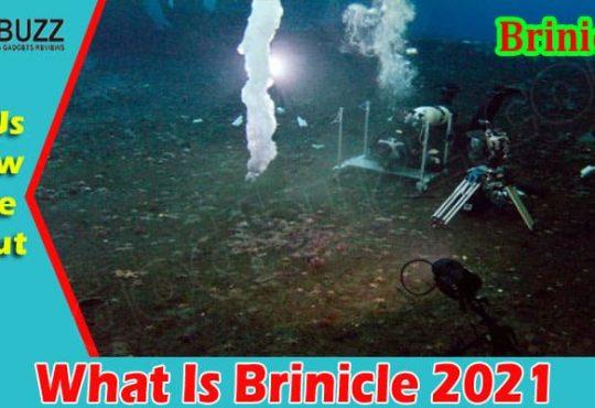 Latest News Brinicle
