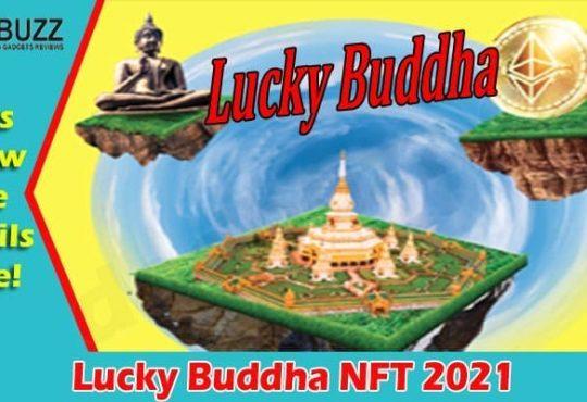 Latest News Lucky Buddha NFT