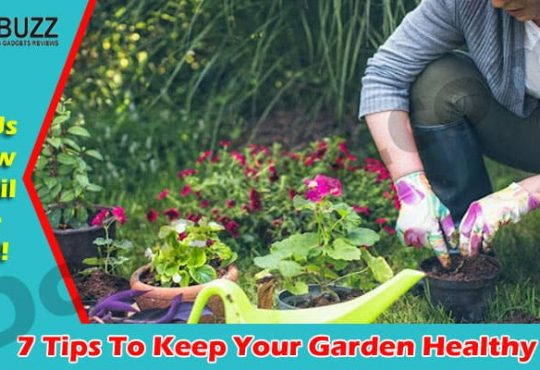 Read Easy Tips To Keep Your Garden Healthy